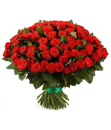 Изображение 101 красная роза