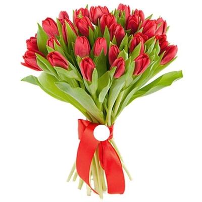 Изображение 25 красных тюльпанов