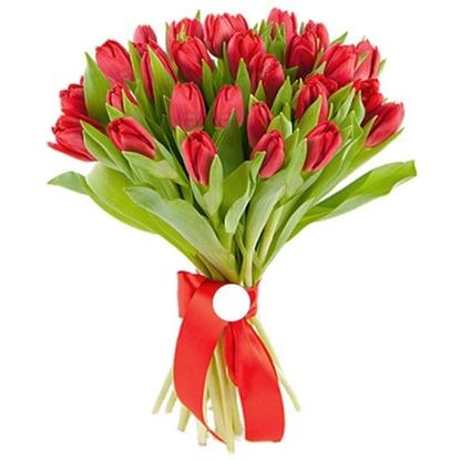 Зображення 25 червоних тюльпанів