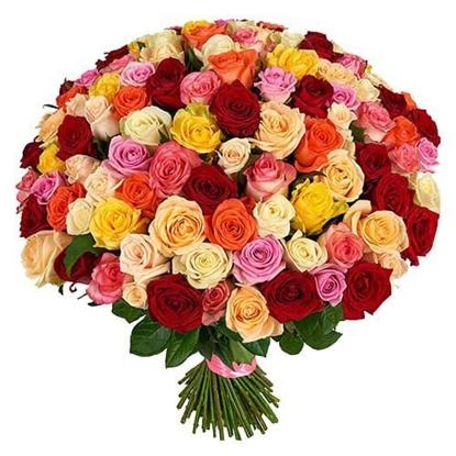 Изображение 101 троянда мікс
